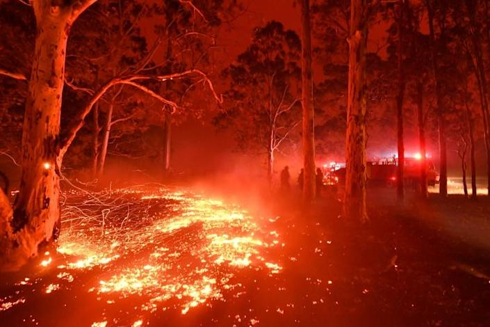 Burning embers cover the ground as firefighters battle against bushfires around the town of Nowra (AFP Photo/Saeed KHAN)