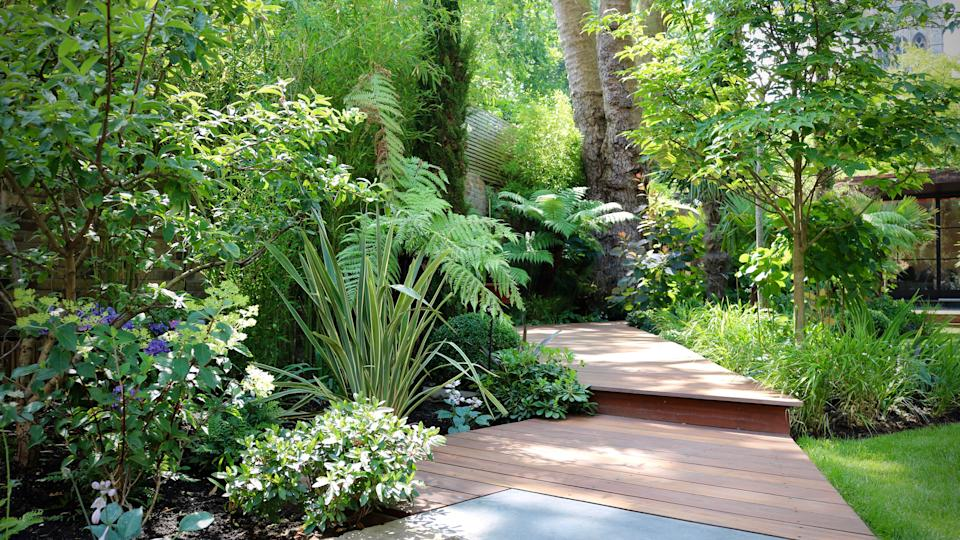 curved decked pathway leading through a garden