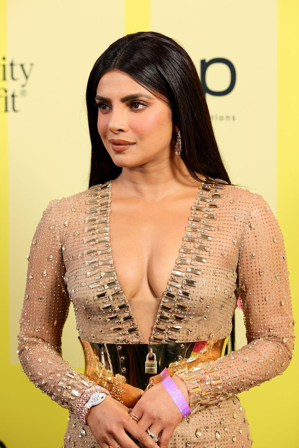<p>Chopra walked the red carpet looking classic as ever, with monochromatic mauve hues on her eyes, lips, and cheeks. </p>