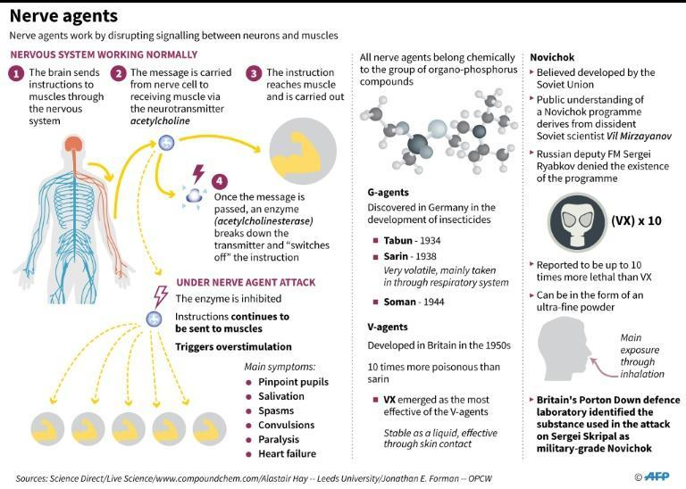 A factfile on nerve agents and what we know about Novichok
