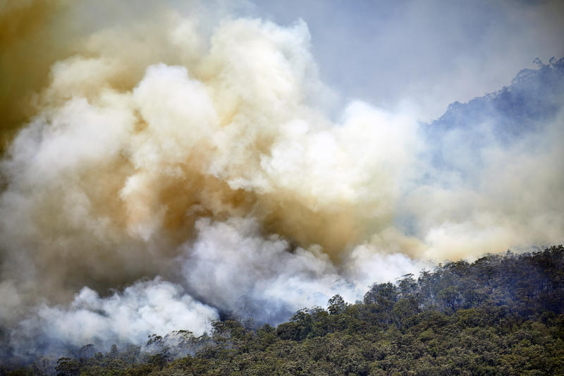 Fires like this one in the Blue Mountains, NSW, have destroyed key habitat across Australia. Source: Getty