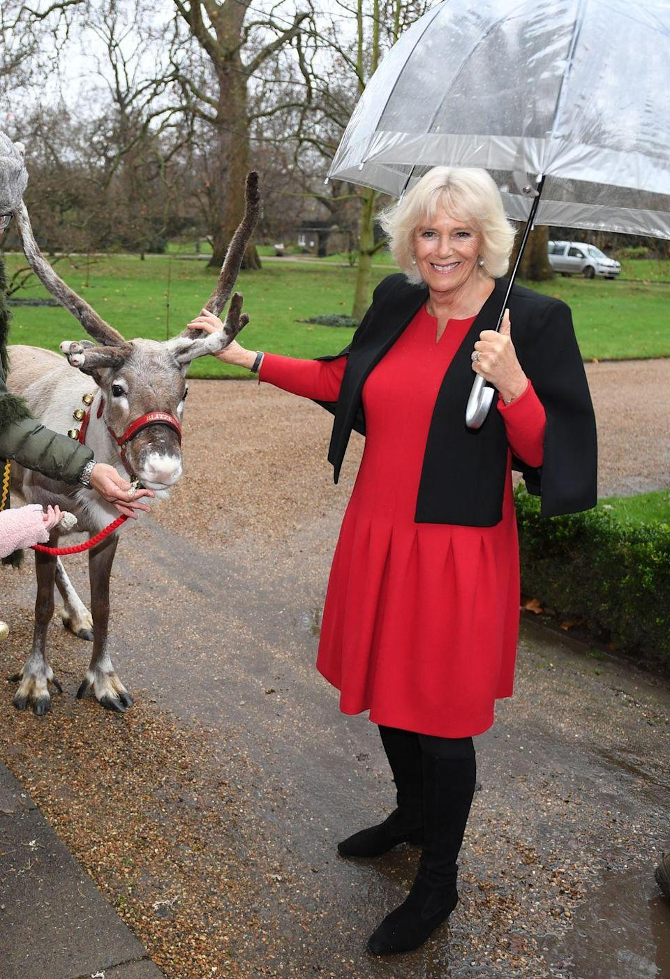<p>Looking very festive in a red dress and black capelet, the Duchess hosted her annual children's Christmas party at Clarence House. The holiday lunch invites children who are seriously ill to enjoy activities including tree decorating and meeting reindeer. </p>
