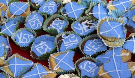 Cakes are seen at a tea-party organised by members of the group 'English Scots for YES' near Berwick-upon-Tweed on the border between England and Scotland September 7, 2014. REUTERS/Russell Cheyne