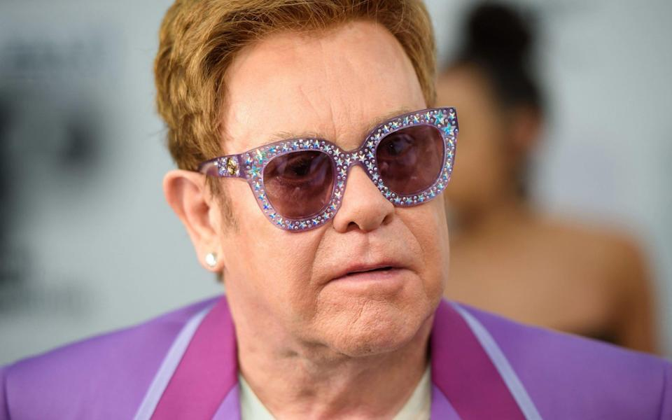 Lord Frost on Elton John: You're still standing after all this time - PA