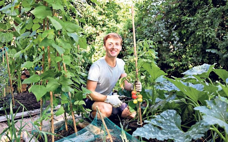Nick Kroll resurrected his old vegetable plot last year when he moved back in with his parents - John Lawrence