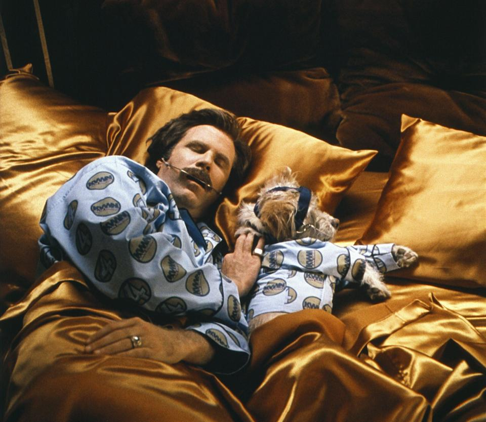 <p>Ron Burgundy (Will Ferrell) and his sidekick Baxter (Peanut) wearig matching pyjamas in 'Anchorman: The Legend of Ron Burgundy' in 2004</p> (Frank Masi/Dreamworks/Apatow Prod/Kobal/Shutterstock)
