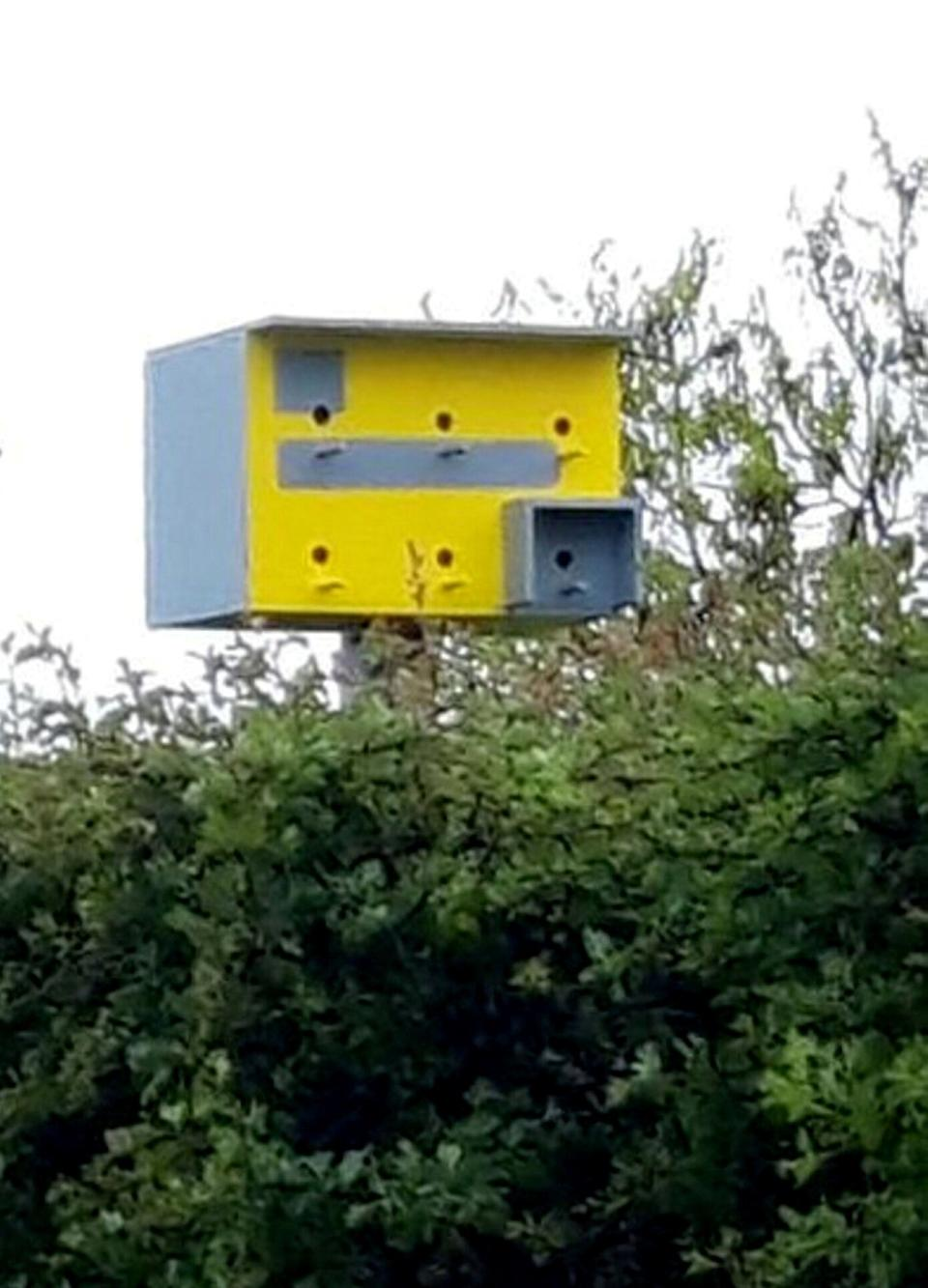 Motorists are being tricked by a fake speed camera - which is actually a well disguised bird box in Kilkhampton, Devon. (SWNS)