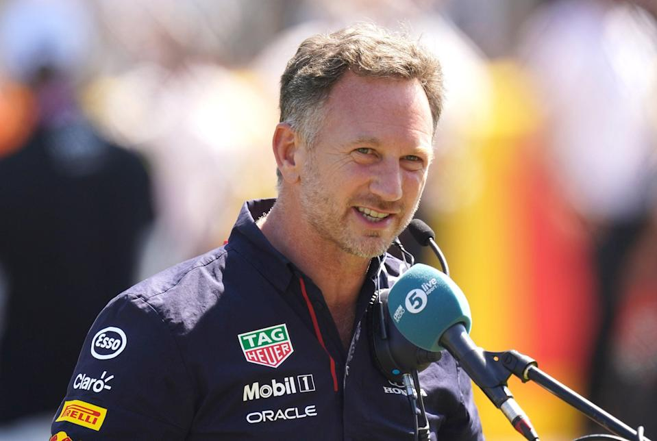 Red Bull's team director Christian Horner was left fuming after the British Grand Prix (PA)