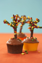 """<p>Chocolate-flavored licorice and chocolate-covered sunflower seeds are the secret to creating these easy sugar """"trees.""""</p><p><a href=""""https://www.womansday.com/food-recipes/cooking-tips/tips/a2919/how-to-make-a-cupcake-tree-18321/"""" rel=""""nofollow noopener"""" target=""""_blank"""" data-ylk=""""slk:Get the Autumn Tree Cupcakes recipe."""" class=""""link rapid-noclick-resp""""><em>Get the Autumn Tree Cupcakes recipe.</em></a></p>"""