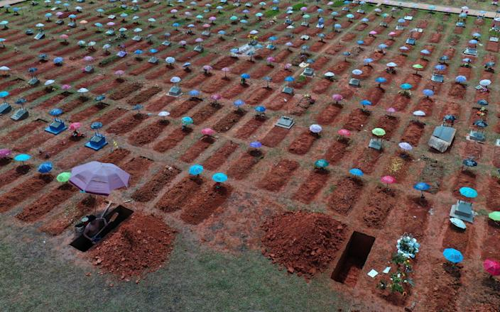 Graves being dug in Iquitos. More than 180,000 people in Peru have died because of the virus - Rodrigo Abd/AP