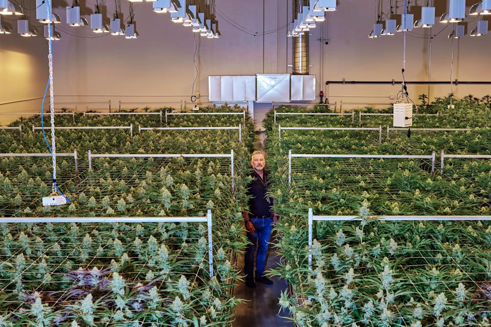 Image: Adam Yudka at Gold Flora in Desert Hot Springs, Calif. (Maggie Shannon / for NBC News)