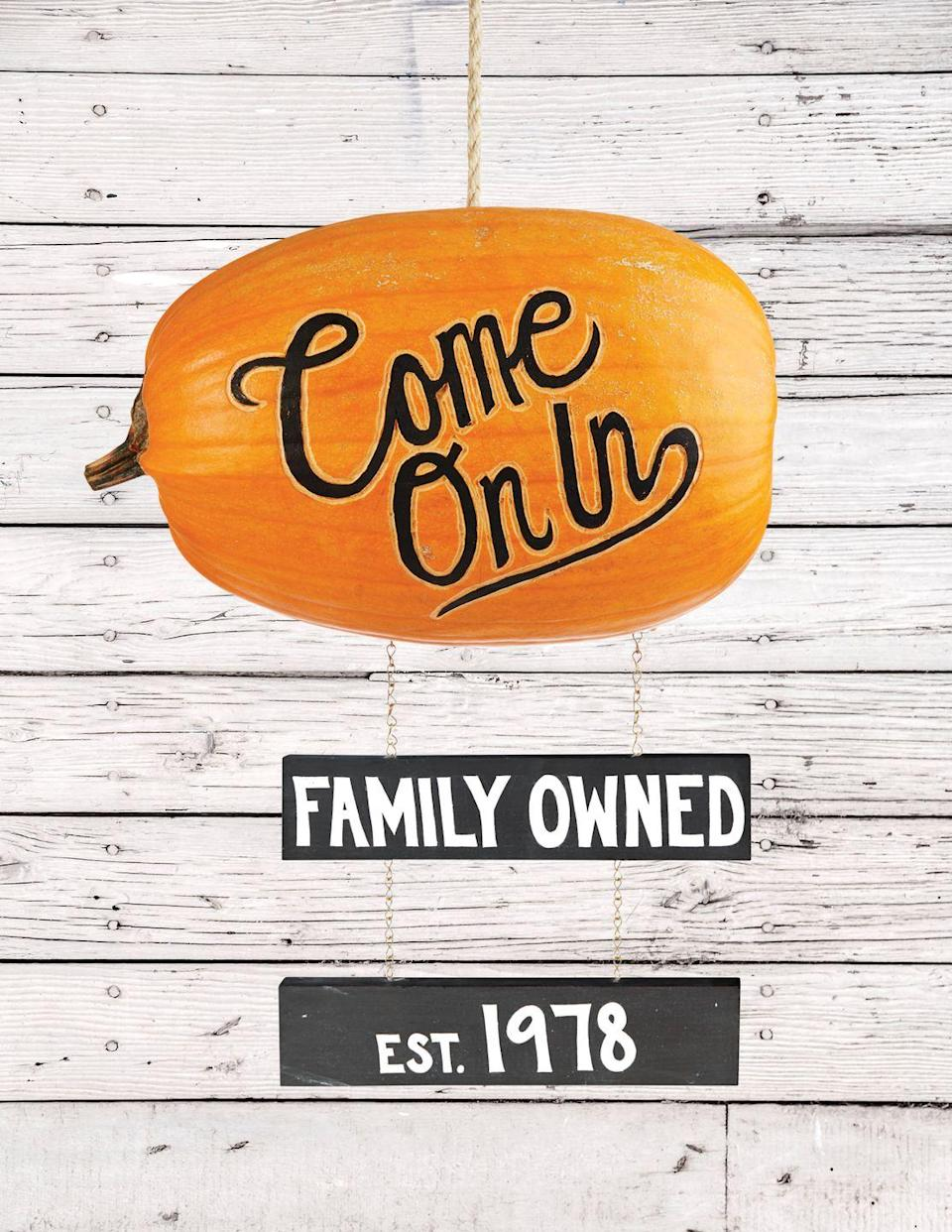 """<p>There's no better way to welcome your visitors this season than with a pumpkin sign! Write your message of choice directly onto the pumpkin for a serious """"wow"""" factor.</p><p><strong>Make the sign:</strong> Cut a large hole in back of an oblong pumpkin; scoop out pulp and seeds. Remove flesh so it's light enough to hang. Etch outline of desired phrase on long side of pumpkin. Color center of letters with a black oil-based paint pen. Paint two 2"""" by 1"""" boards black; once dry, use white paint for desired phrases. Hang from bottom of pumpkin with chain. Cut hole in oblong top of pumpkin. Cut 1"""" dowel the width of the top inside of pumpkin (parallel with words). Tie rope around dowel, and feed rope through hole; hang. </p>"""