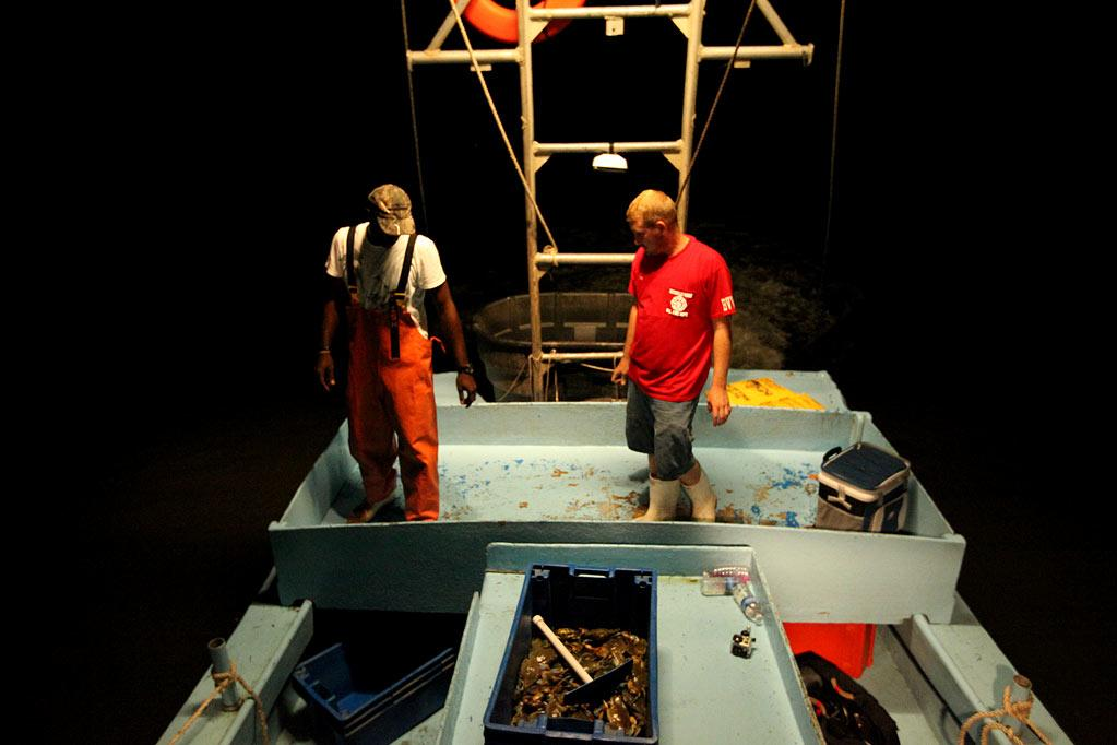 """Captain Dardar and a deck hand assess the nights catch as seen on """"Ragin' Cajuns."""""""