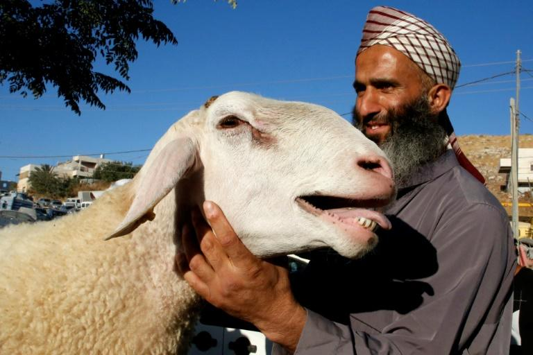 A Palestinian man holds a sheep at a livestock market in the West Bank city of Hebron