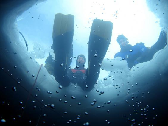 Ice diving is warmer than you think (Monica Dalmasso)