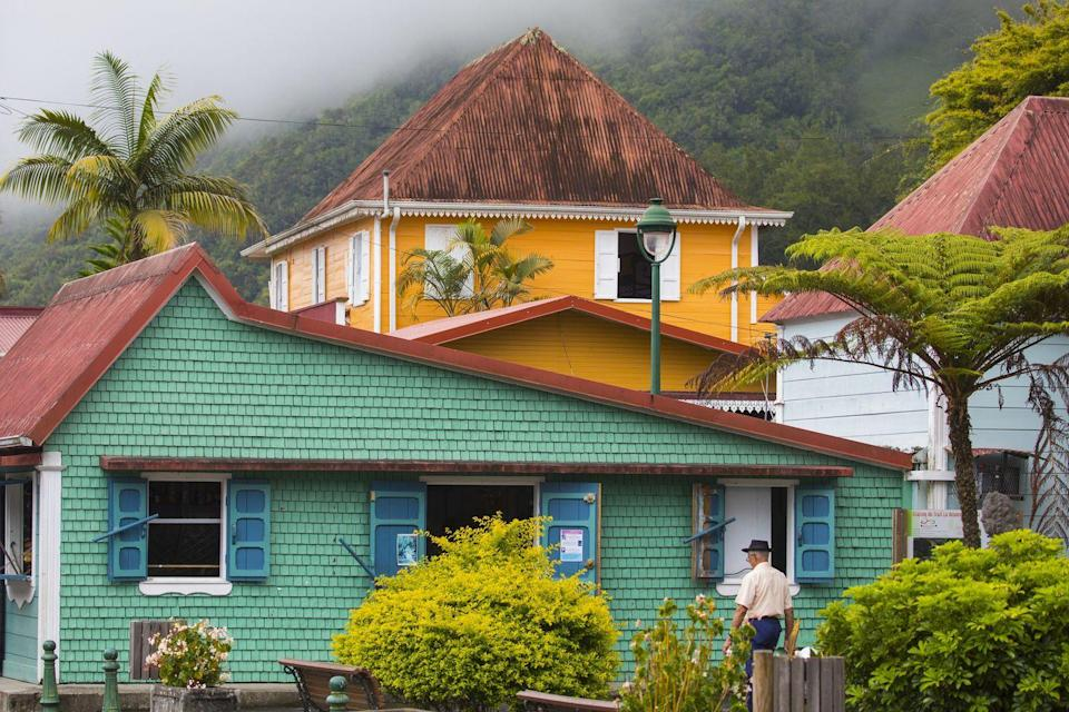 <p>Tropical shades of green and orange blend in with the surroundings on Réunion Island.</p>