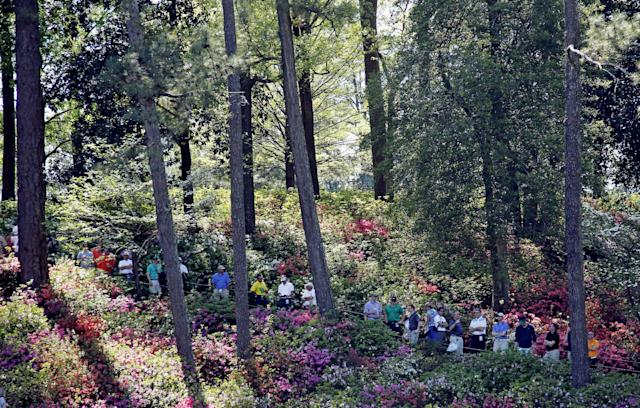 Spectators watch the 16th green surrounded by azaleas during the first round of the Masters golf tournament Thursday, April 10, 2014, in Augusta, Ga. (AP Photo/Matt Slocum)