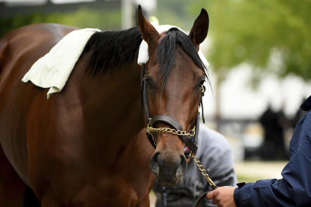 Anothertwistafate is washed after exercising, Thursday, May 16, 2019, at Pimlico Race Course in Baltimore. The Preakness Stakes horse race is scheduled to take place Saturday, May 18. (AP Photo/Will Newton)