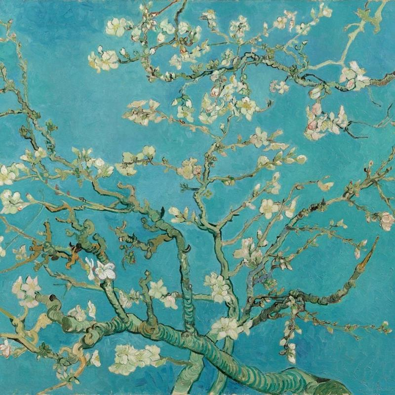 Almond Blossom (1890), from the permanent collection of Amsterdam's Van Gogh Museum - Van Gogh Museum, Amsterdam (Vincent van Gogh Foundation)