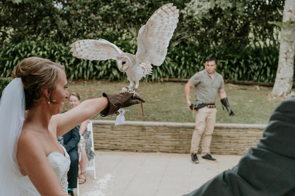 One of the special elements was an owl flying down the aisle to deliver the rings. (Photo: James Day)