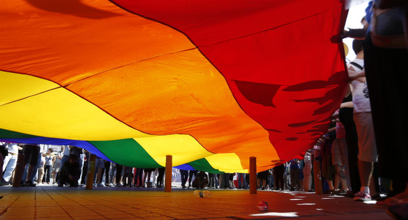 Gay rights activists wave a rainbow flag during a demonstration near Taksim Square in Istanbul, Turkey, Sunday, June 23, 2013. (AP Photo/Petr David Josek)