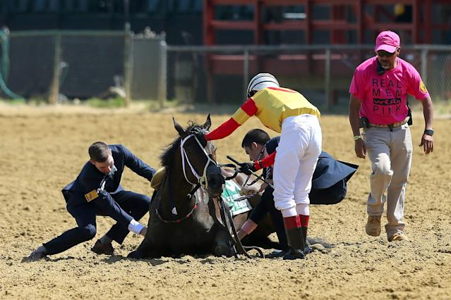 Jockey Trevor McCarthy tends to Congrats Gal after the filly fell down during the running of the Miss Preakness States. (Photo by Cliff Welch/Icon Sportswire via Getty Images)
