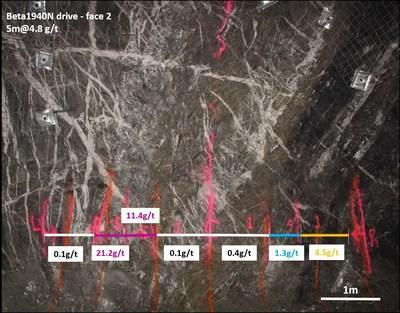 Figure 3: Exploratory Drive Along Larkin Zone – 1940N Drive, Face 2 showing individual face grade gold assays.  Mineralization hosted by shear and extensional veining associated with strong albite-biotite-pyrite alteration. (CNW Group/Karora Resources Inc.)