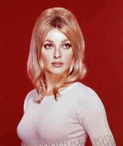 Sharon Tate in 1967