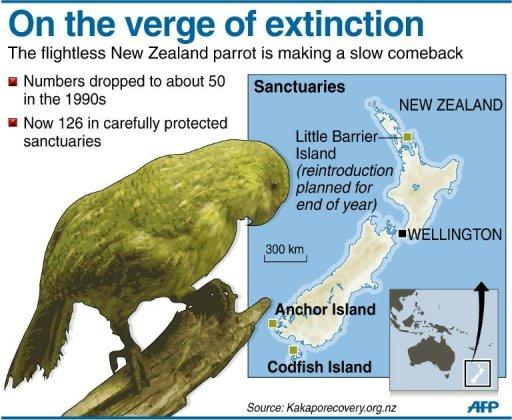 Graphic showing the two remaining and one planned sanctuary for New Zealand's kakapo parot, whose numbers were down to the last fifty individuals in the 1990s, climbing back up to 126 this year
