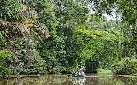 Tortuguero National Park - Credit: NIGEL PAVITT