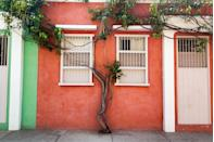 <p>A claylike red and minty green find harmony in Colombia.</p>
