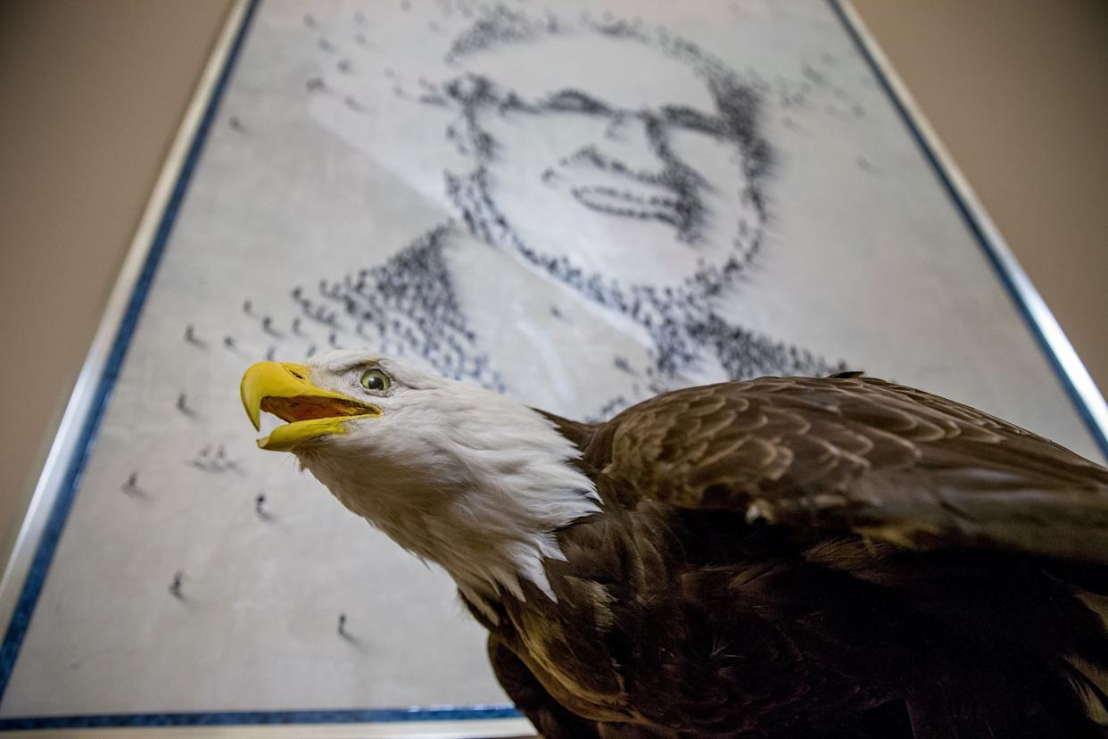 A large abstract painting of Senate Minority Leader Harry Reid of Nevada is visible on a wall next to a stuffed eagle in his office on Capitol Hill in Washington on March 27, 2015. Reid recently announced he will not seek re-election to another term.