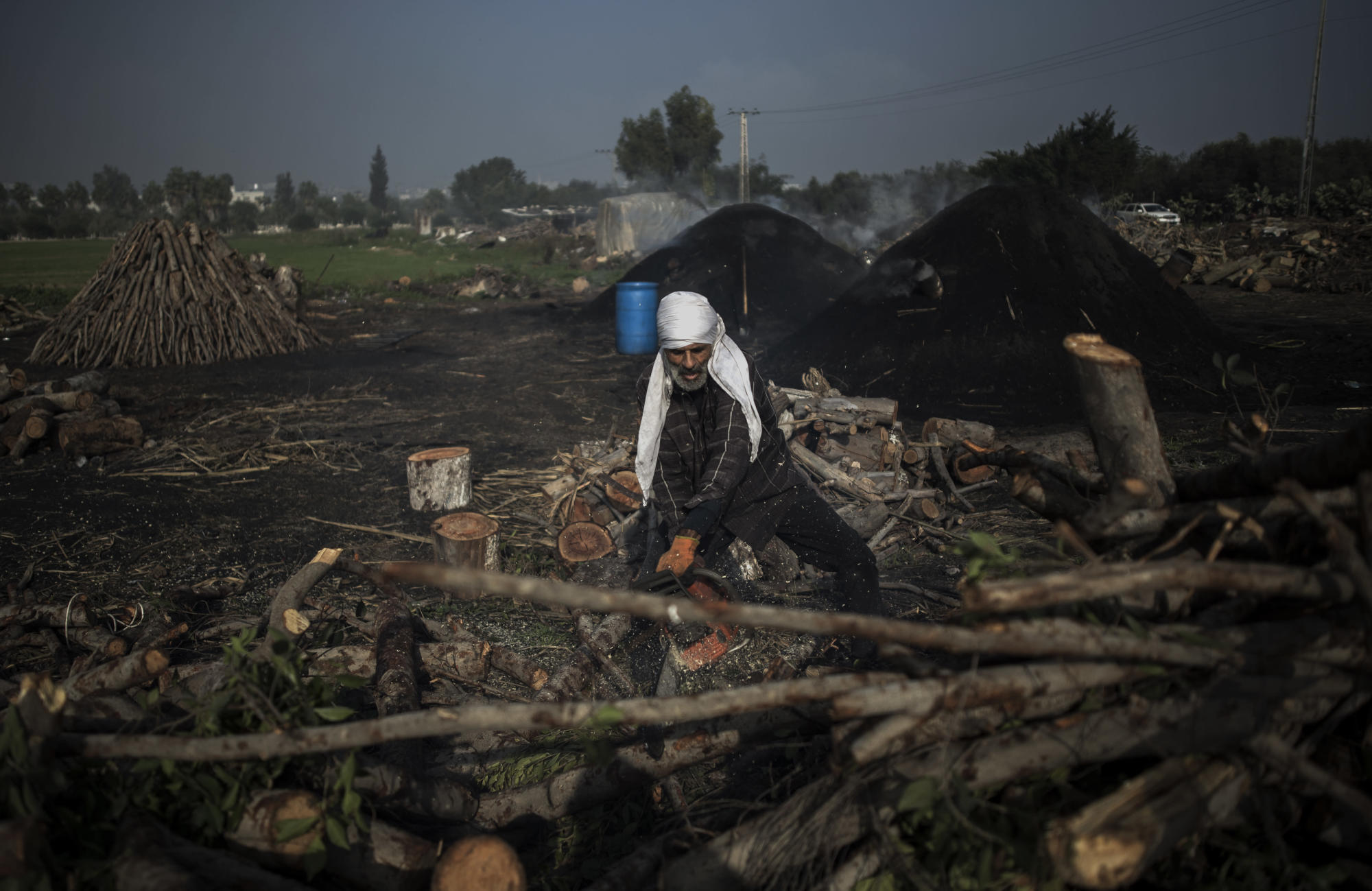 Sparse trees, little work for woodcutters in squeezed Gaza