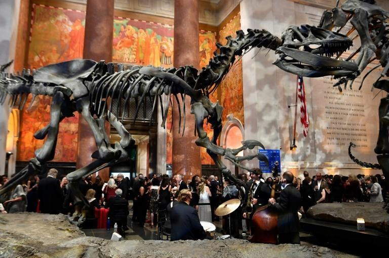 The Pen America Literary Gala was held in the dramatic setting of the American Museum of Natural History in New York (AFP/Angela Weiss)