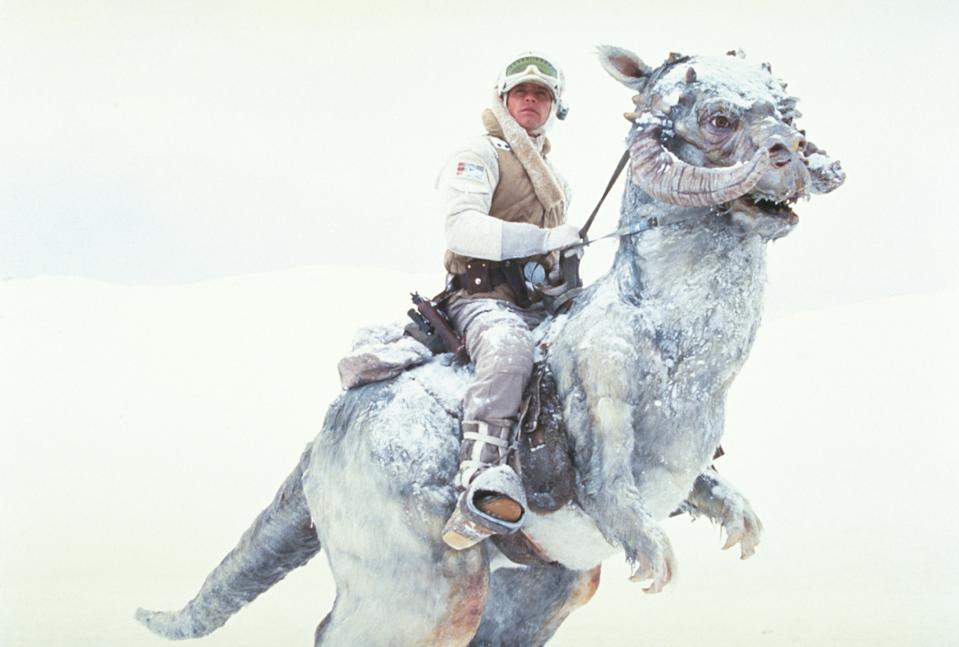 Luke Skywalker (Mark Hamill) on a tauntaun on the planet Hoth in 'The Empire Strikes Back' (Photo: Lucasfilm)