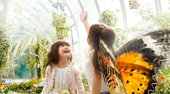 The butterfly garden, open 24 hours, stretches across two floors from level 2 to 3. Picture: Supplied