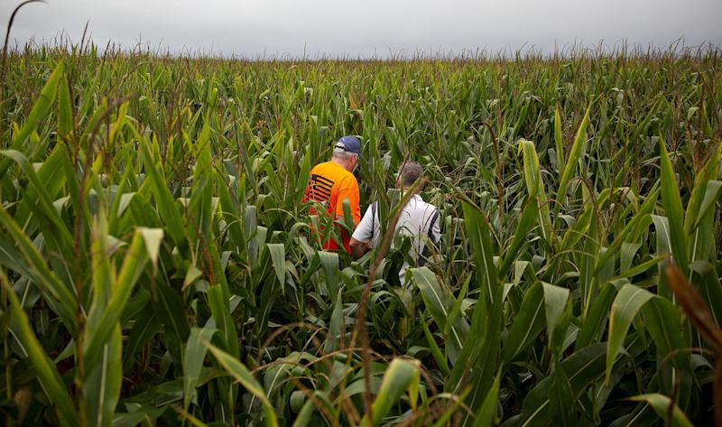 White House Weighs Moves to Blunt Farm-State Fallout on Biofuel