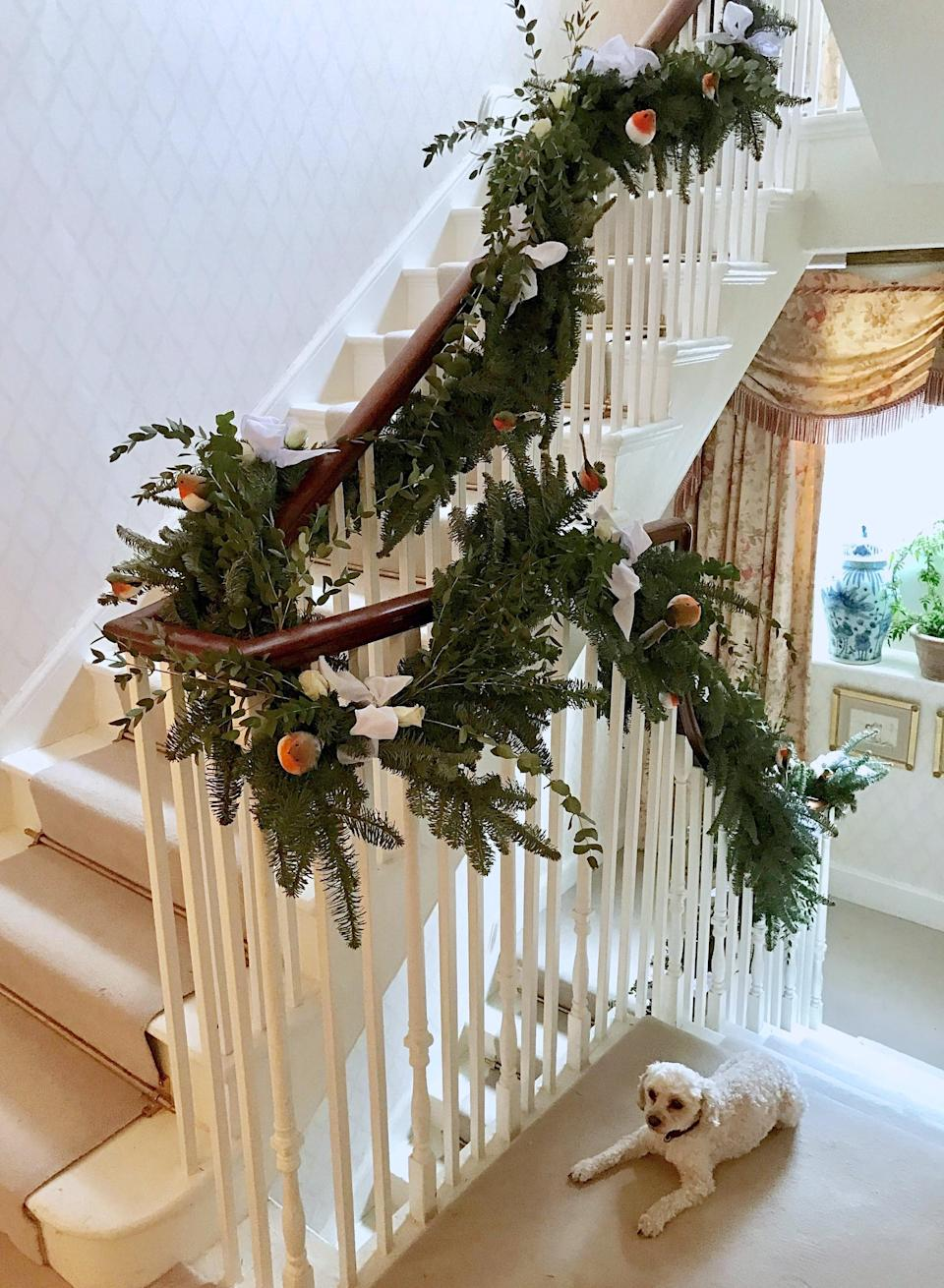 Ethel, our Cavapoo, takes a break by our staircase. We wrapped fresh garlands all the way up and added robins, ribbons, and roses. It smelt amazing!