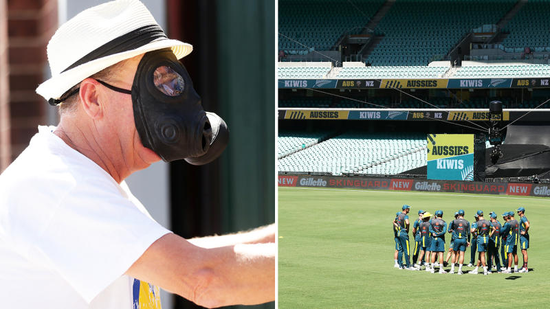 Fans, pictured here after being locked out of the SCG for Australia's clash with New Zealand.
