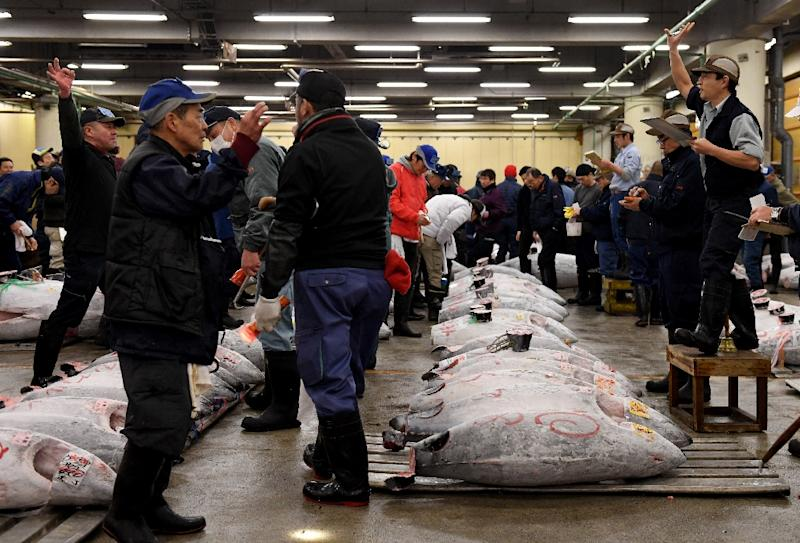 An auctioneer (R) starts the new year auction of tuna at Tokyo's Tsukiji fish market -- this year's could be the last at the current site (AFP Photo/TOSHIFUMI KITAMURA)