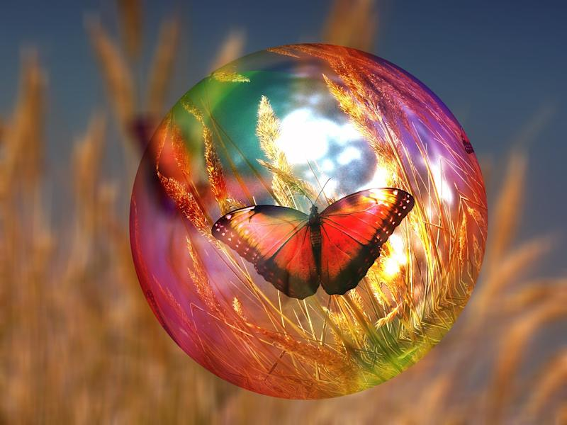 butterfly-bubble