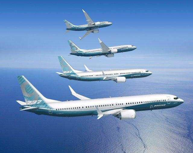 The Boeing 737 MAX family of aeroplanes