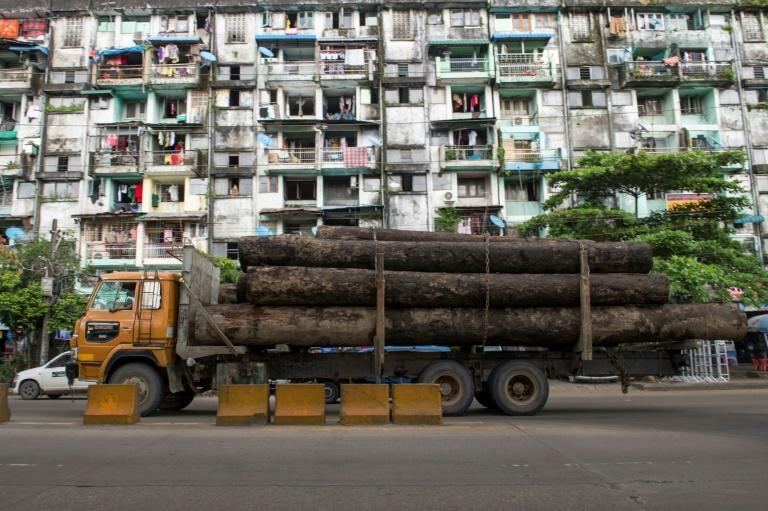 A truck with logs in Yangon as the US Treasury on April 21, 2020 placed Myanmar state-owned timber and pearl businesses on its sanctions blacklist