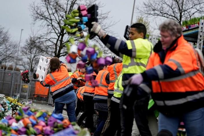 With countless flowers going to waste the Dutch horticultural sector is sounding the alarm about the effects of the coronavirus crisis (AFP Photo/Kenzo TRIBOUILLARD)