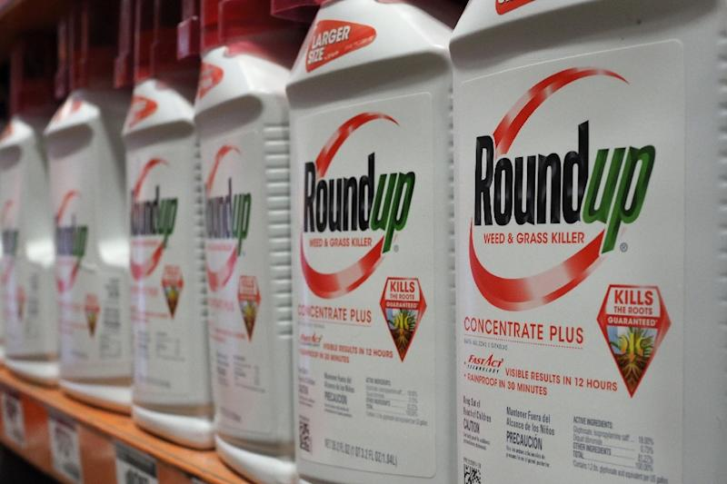 Bayer announced in April 2019 that over 13,000 lawsuits related to the weedkiller Roundup had been launched in the US (AFP Photo/Robyn Beck)