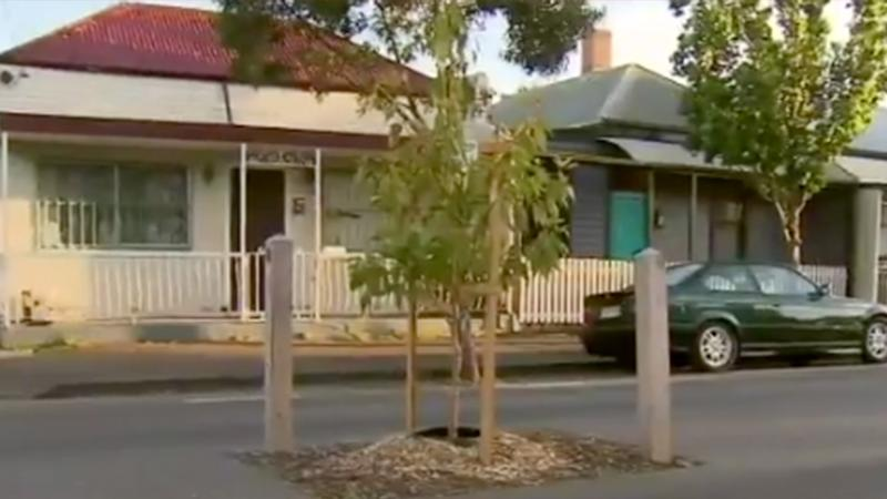 Residents of an inner-city Melbourne suburb have been left scratching their heads after a tree was planted in the middle of a street. Source: Channel 9