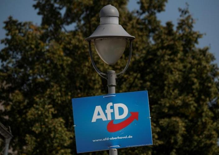 The six-year-old anti-immigration Alternative for Germany party or AfD has polled strongly in both states (AFP Photo/John MACDOUGALL)