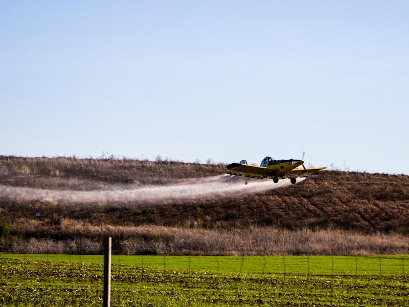 Prenatal Exposure to Pesticide DDT Linked to Autism