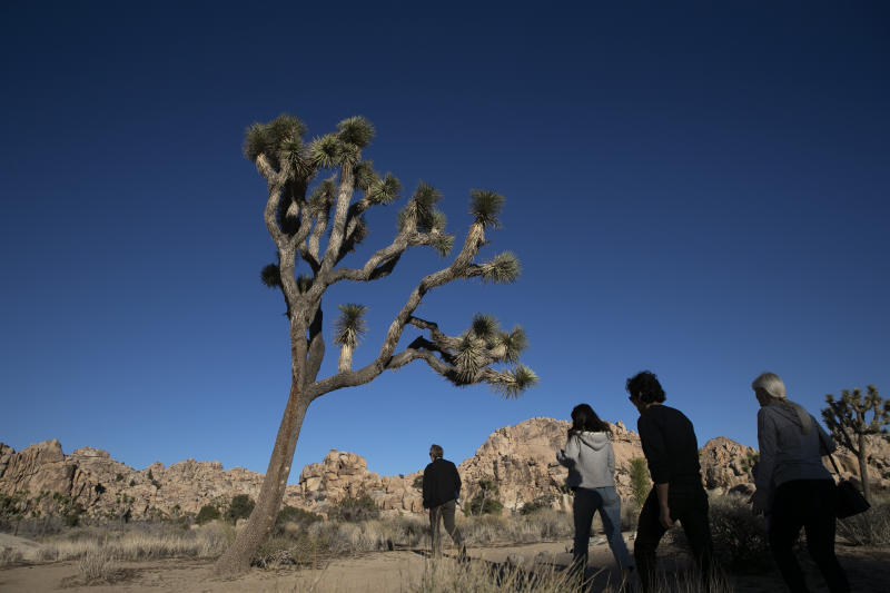 FILE - In this Jan. 10, 2019 file photo people visit Joshua Tree National Park in Southern California's Mojave Desert. Joshua Tree National Park is gearing up for the huge crowds drawn to the Southern California desert during the holidays. The National Park Service says the period from late December through Jan. 1 brings some of the busiest days, and campgrounds and parking lots will likely be full. At times, the park becomes drive-through-only because there are no more parking spaces. (AP Photo/Jae C. Hong,File)