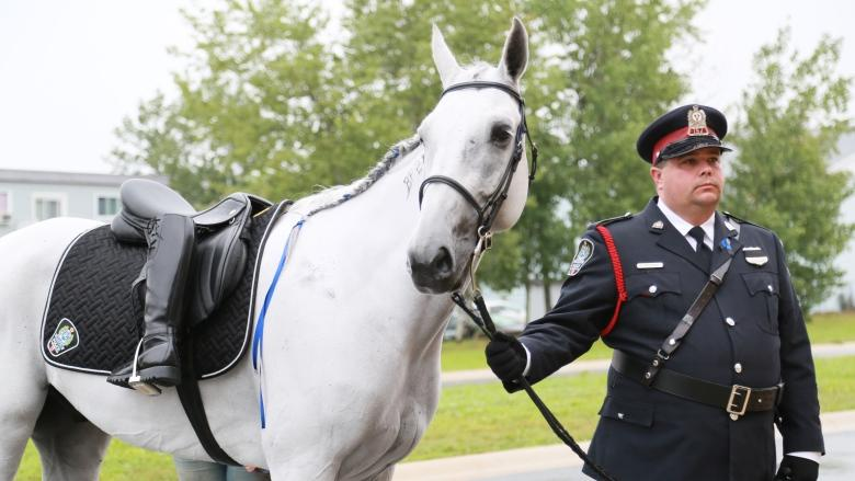 Slain Fredericton police officer's horse escorts owner to final send off
